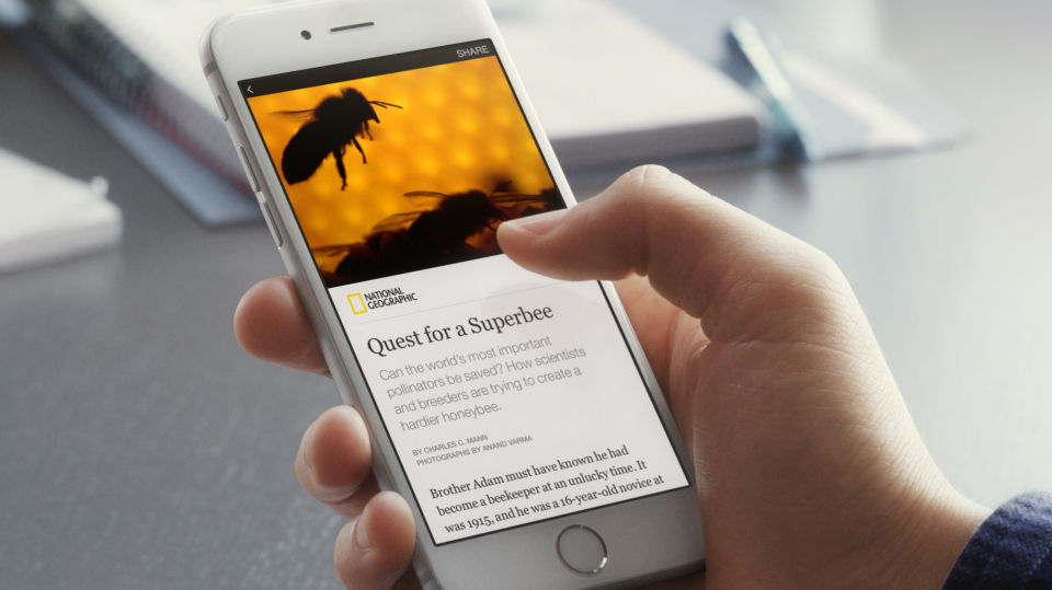 Instant Articles on Facebook, Twitter Videos are on the Rise and Bing to Introduce its Mobile Friendly Search Algo: This week in Digital